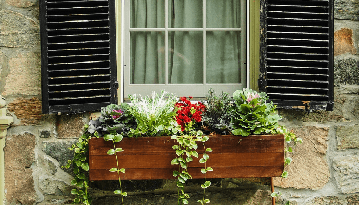 Planters used to create cape cod curb appeal.