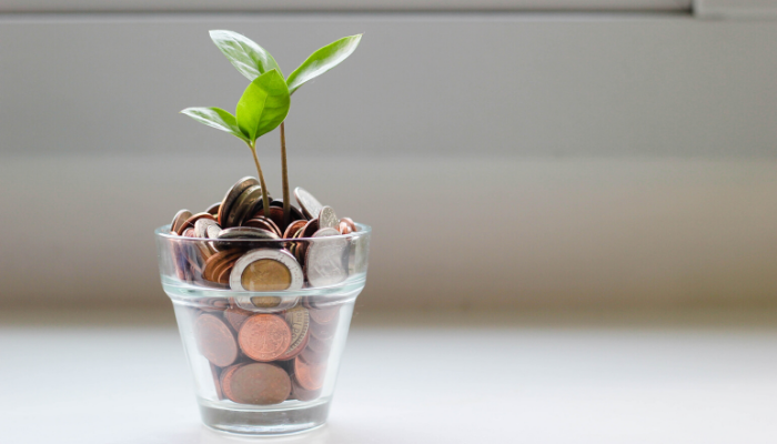 A plant growing from money.